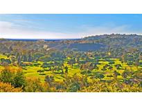 View 5242 Caminito Providencia Rancho Santa Fe CA