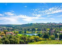 View 14540 Caminito Saragossa Rancho Santa Fe CA