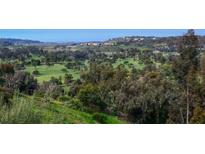 View 5252 Caminito Providencia Rancho Santa Fe CA
