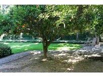 View 13331 Fallen Leaf Rd Poway CA