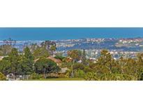 View 7008 Corintia St Carlsbad CA