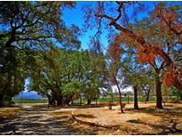 View 2029 Lake Morena Campo CA