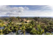 View 1732 Rancho Summit Dr Encinitas CA