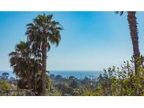 View 823 Passiflora Ave Encinitas CA